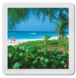 12x12 Inch Photographic Prints From Your 127 Mounted Slides